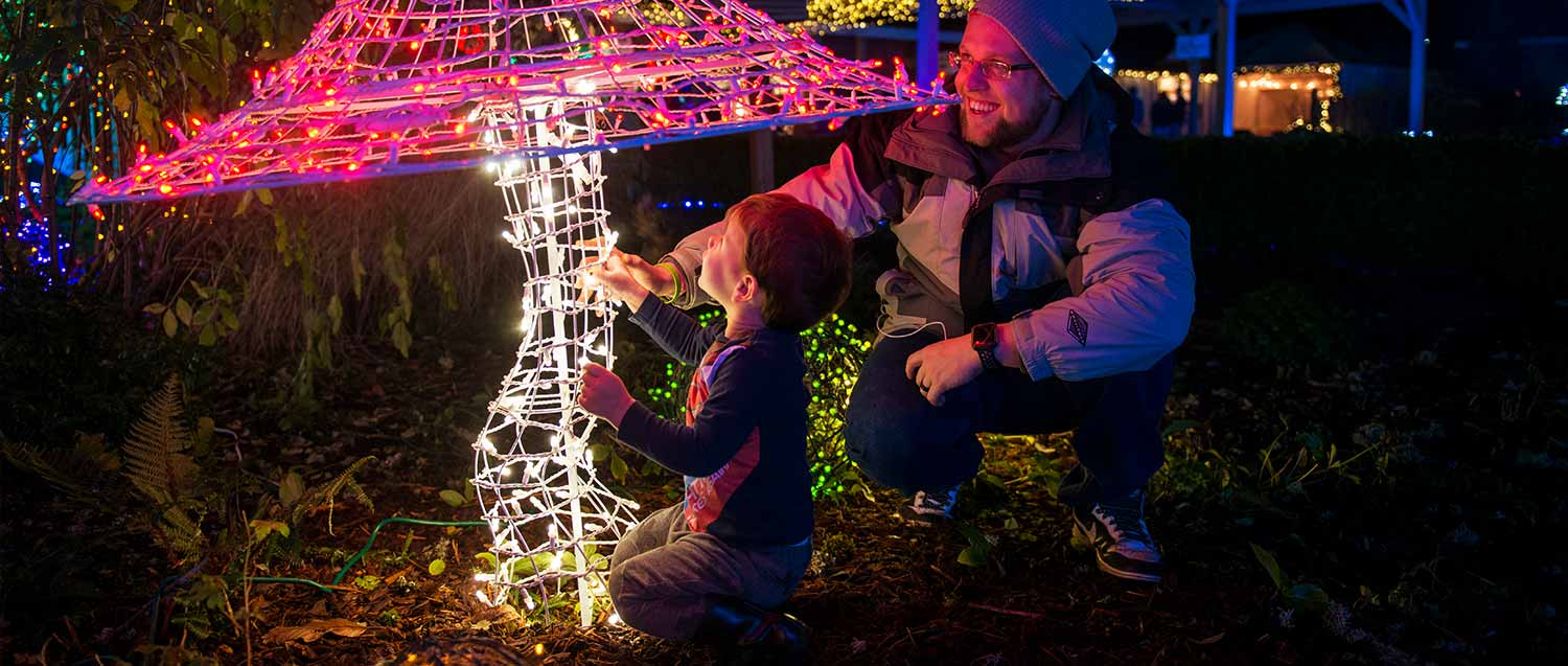 christmas light show with family